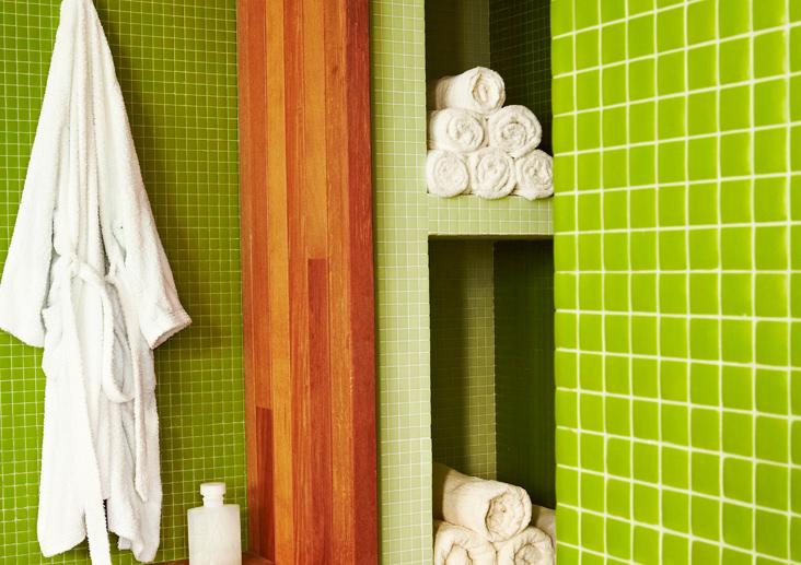 Proyecto-hisbalit-Sauna y Vestuario verde | Vivienda privada-