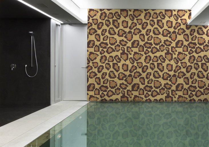kenia-leopard